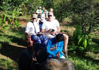 Safari cu elefanți